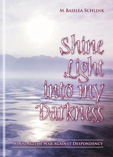 ShineLight 2x3x100